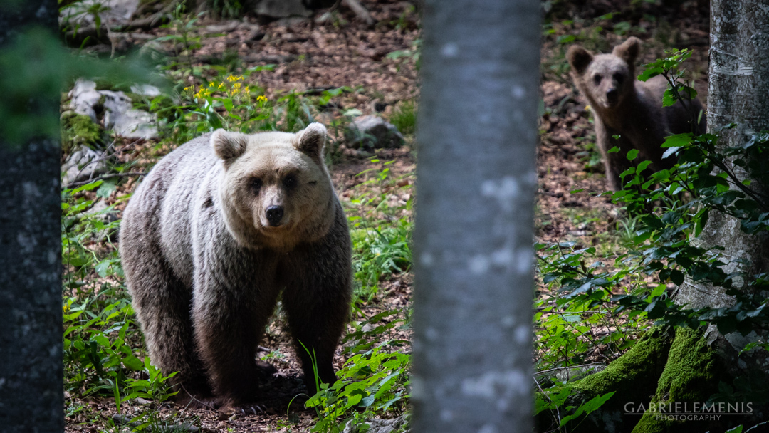 fotomenis_01_IMG_8510