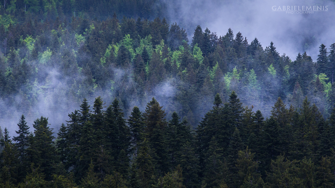 fotomenis_02_GMP_0204