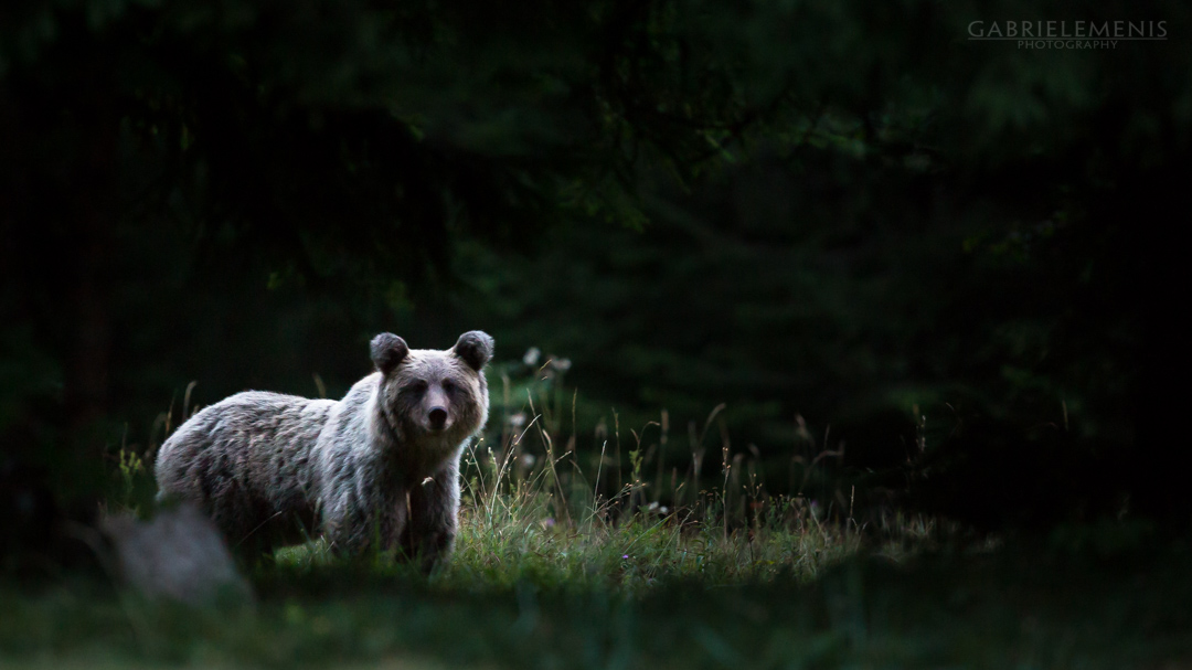 fotomenis_04_IMG_2631