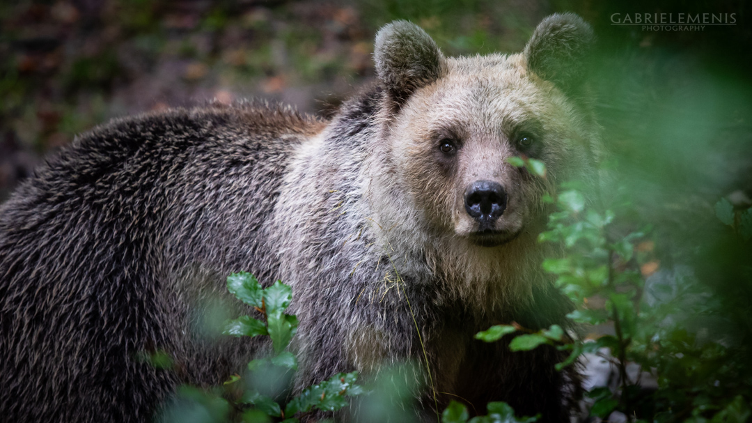 fotomenis_05_IMG_9935