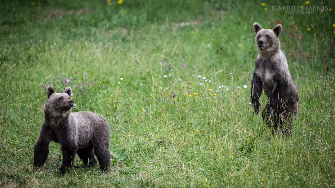 fotomenis_07_IMG_1747