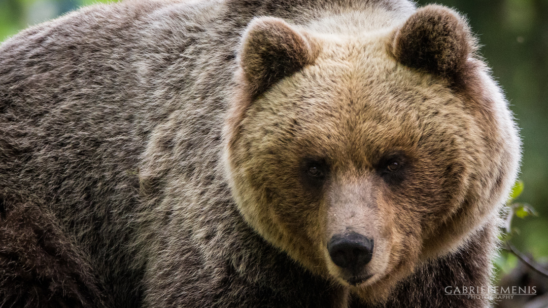 fotomenis_08_IMG_8809