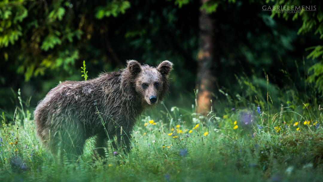 fotomenis_10_IMG_1344
