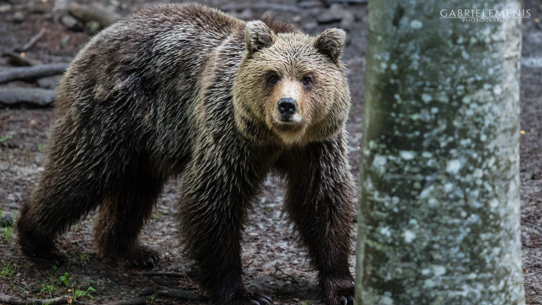fotomenis_11_IMG_0695